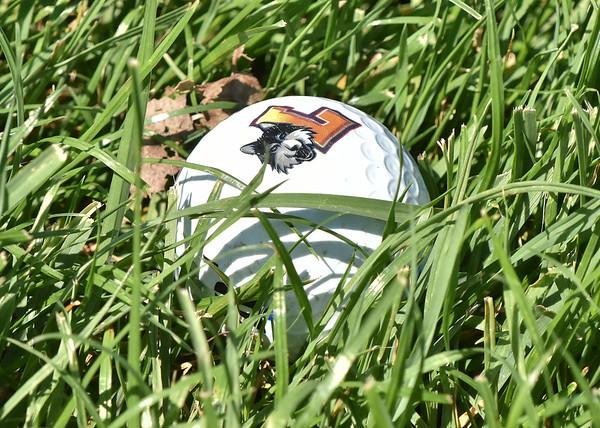 Loyola Golf