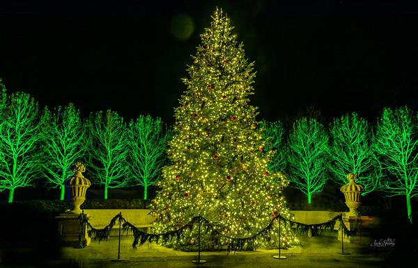 A Longwood Gardens Christmas 2017
