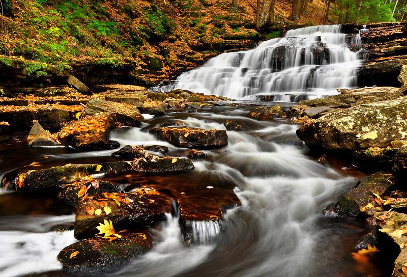 Fall Foliage in Beecher Creek Falls, New York.