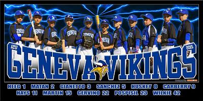 2015 12U Hays Geneva Vikings Team Poster
