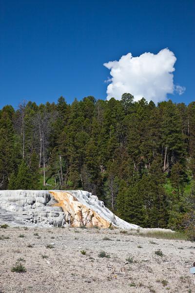 Yellowstone-11.jpg