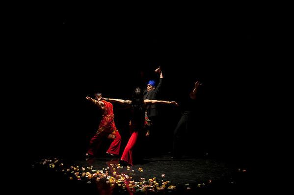 M'Oro Flamenco