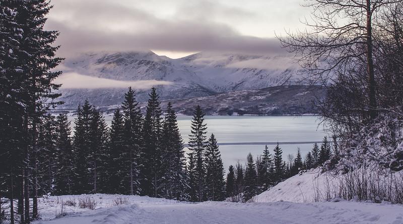 Tromso_10.jpg