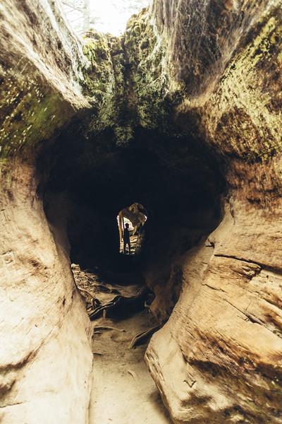 Rui in Sequoia-06909.jpg