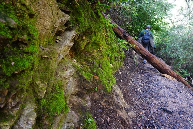 20160218055-Gabrielino Trail Scouting.JPG