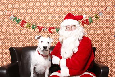 Calgary Humane Christmas 2015