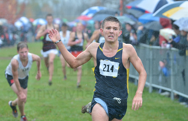 West Aurora Boys Cross Country Sectional 10/31/2015