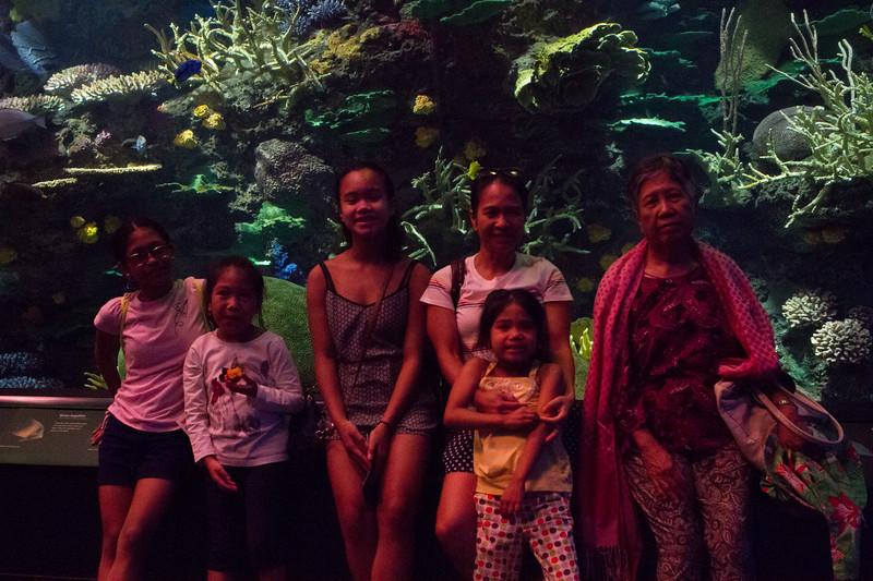 NY_Aquarium-7.jpg