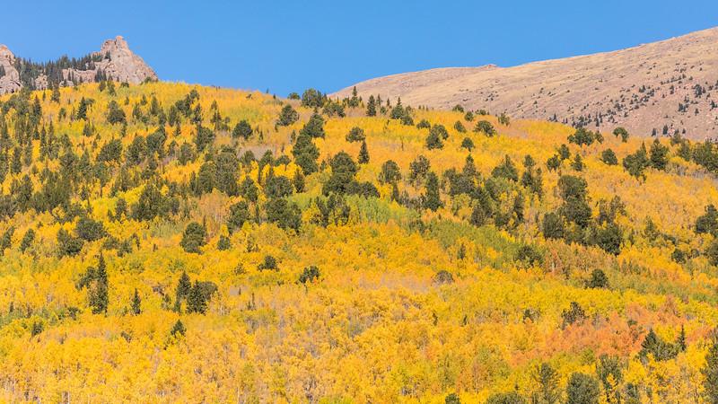 Colorado19_5D4-1229.jpg