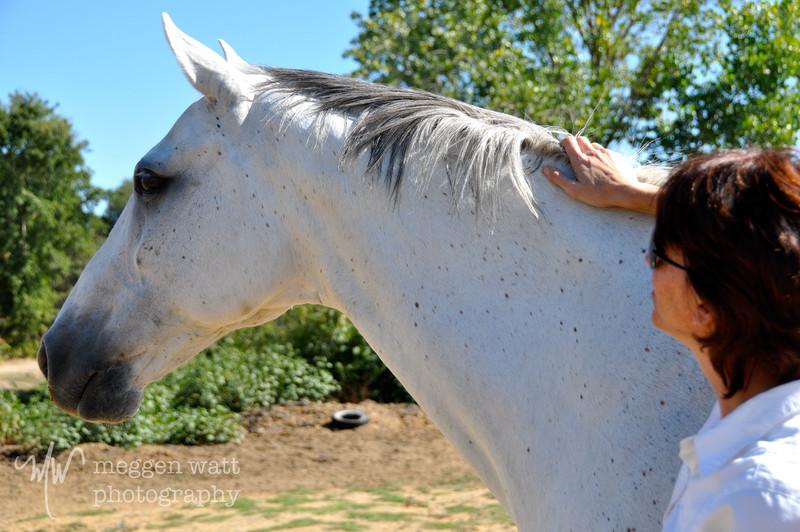EB&Horses-053.jpg