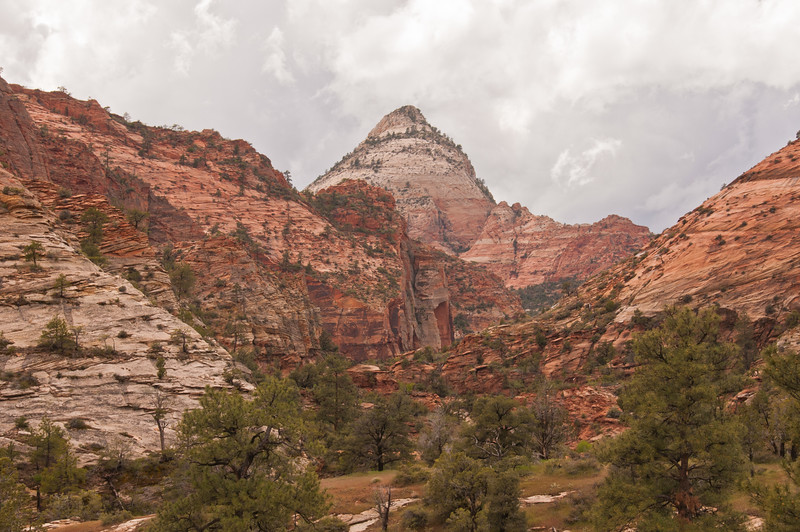 Zion National Park (9 of 27)
