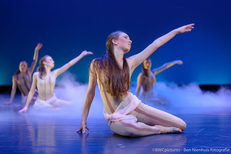 Bosch danst 2013 (23)