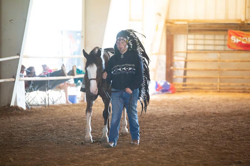 HorseCostume-25.jpg