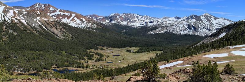 Views towards Dana Meadows
