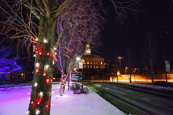 La Roche College. Holiday Lights.