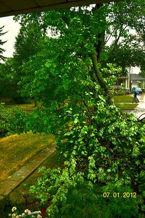 Summer Storm July 2012
