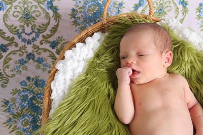 Wayde ~newborns