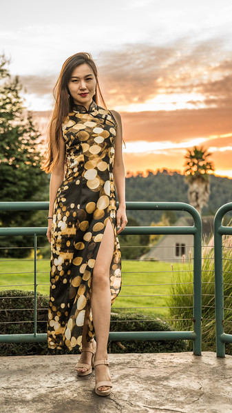 New collection of Qipao/cheongsam designs by David Louis Klein