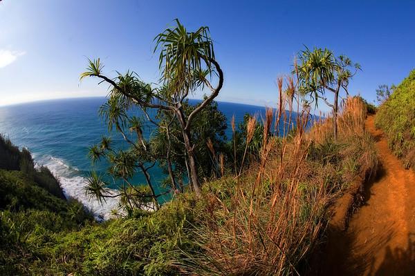 Hanakapi'ai Beach Hike (Na Pali Coast)