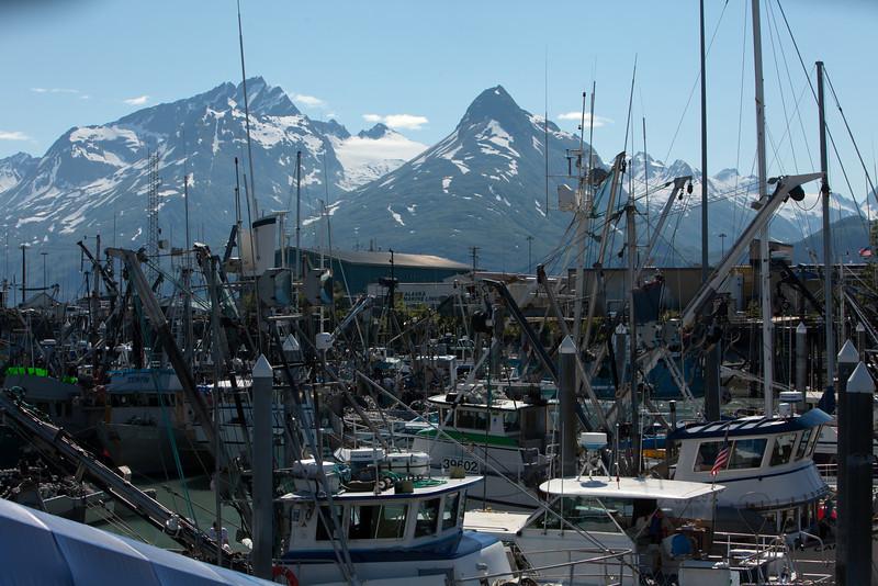 Alaska Copper River-0598.jpg