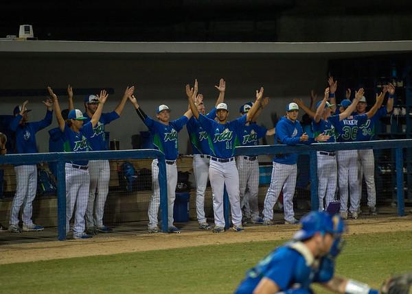 #12 FGCU Baseball vs USF