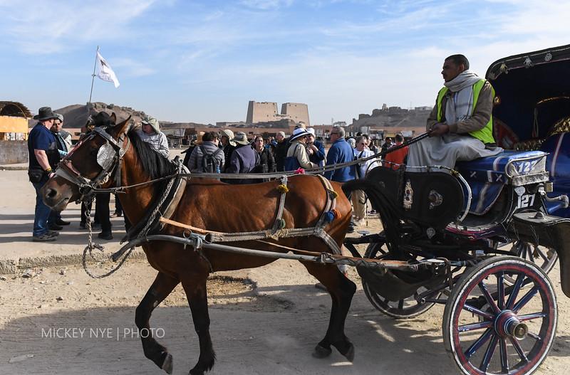 020820 Egypt Day7 Edfu-Cruze Nile-Kom Ombo-5977.jpg