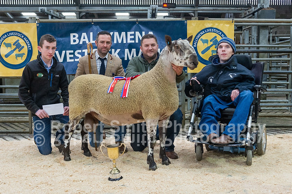 Bluefaced Leicester Show and Sale at Ballymena - September 22nd 2018