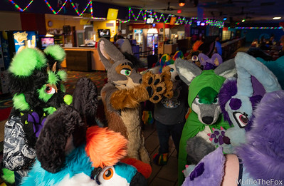 South Bay Furbowl (June 2019)