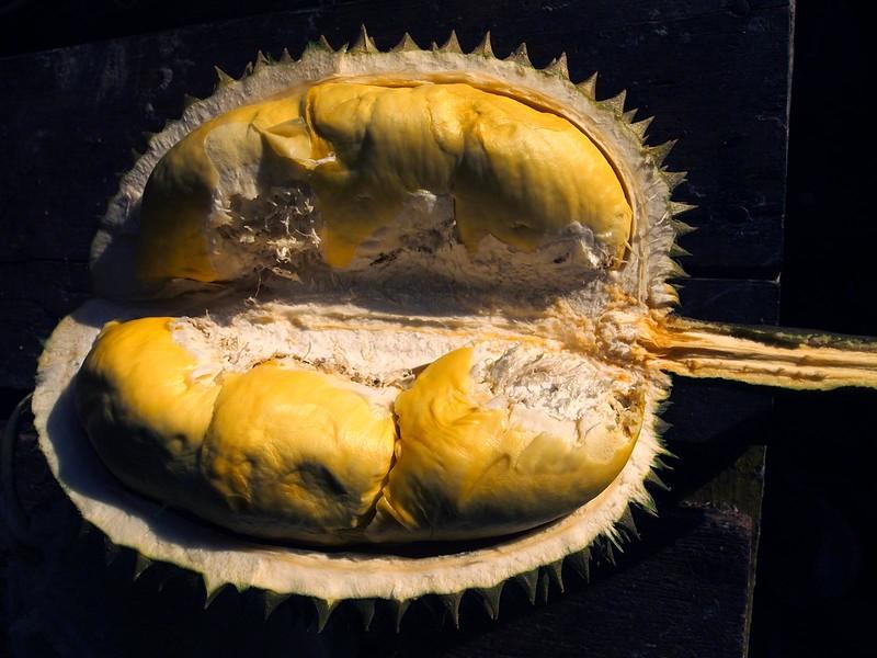 touch-up-durian-ganyao.jpg