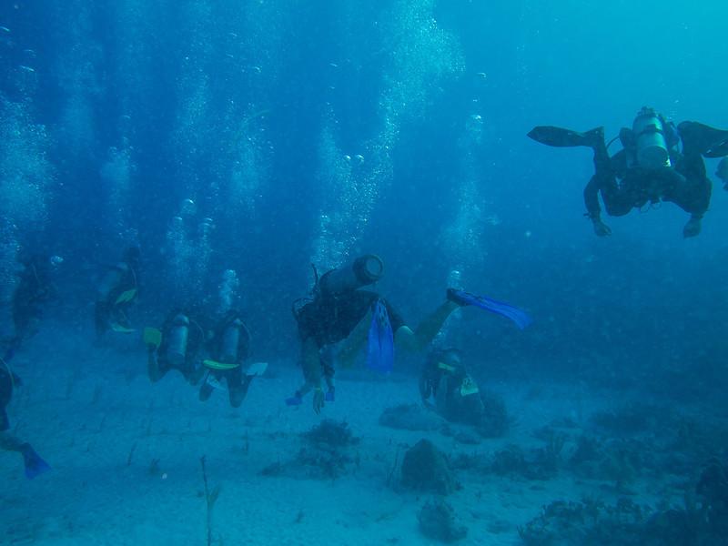 Tulum Trip - Diving 20130405-17-55 _405264104.jpg