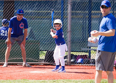 Coach Pitch - Cubs - 2017