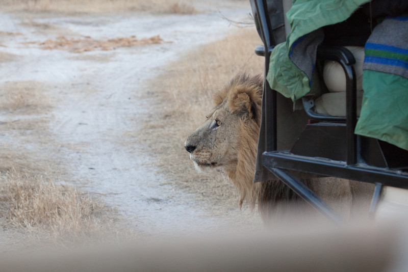 Botswana-20110719-11288.jpg