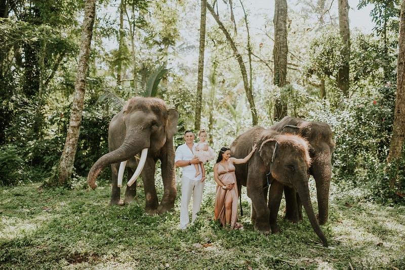 VTV_family_photoshoot_elephants_Bali_ (65).jpg