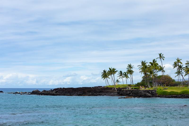 Travel_Hawaii_03032020_0309.jpg