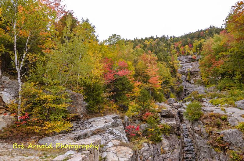 NH Foliage-27.jpg