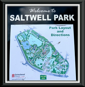 004 - Saltwell Park - Gateshead, Tyne & Wear - UK 2013