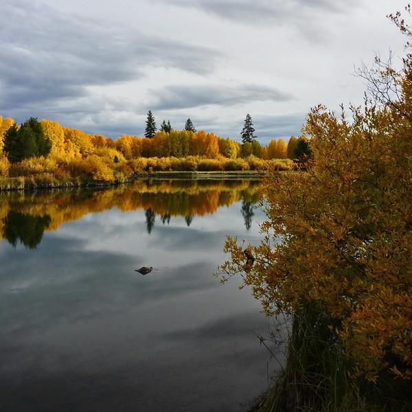 autumn08-035_39660881104_o.jpg