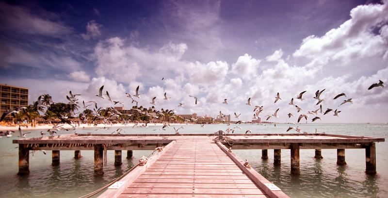 Google+ I Getty Images I Twitter