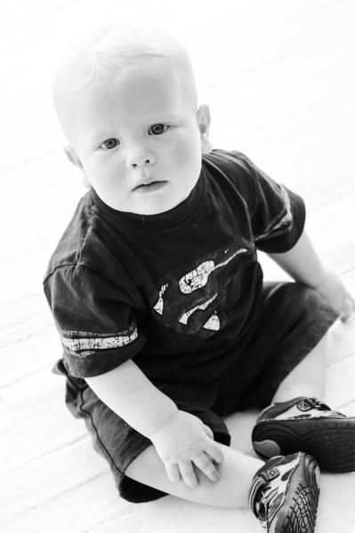 Luke 12 months