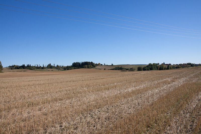 Høst2010-245