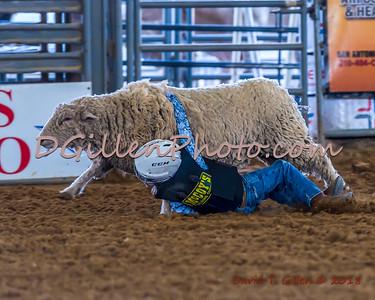 2018 03 31 Tejas Rodeo