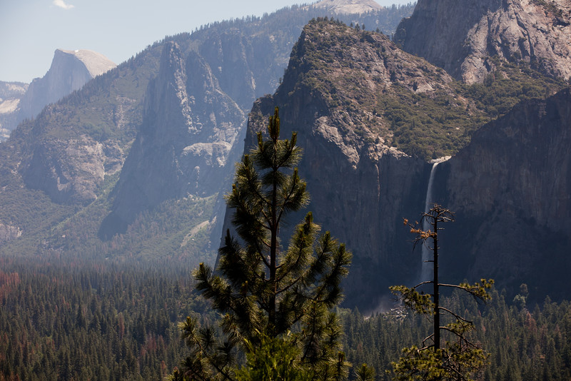 Yosemite_2016_Park-13.jpg