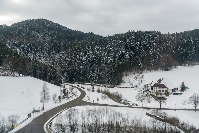 Black Forest Line-7513.jpg