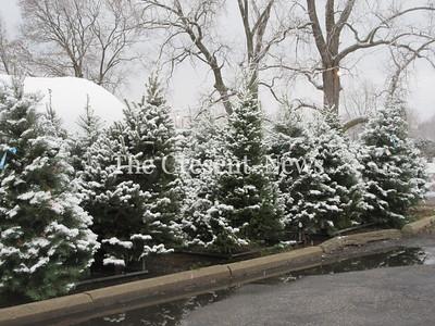 11-20-18 NEWS Snow scenes