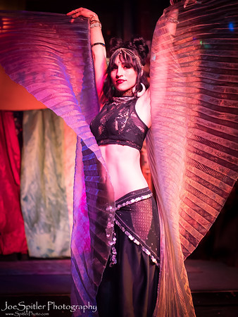Belly Dance Benefit Show at Flamingo Cantina April 8th 2018