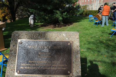 26416 2009 Peace Tree