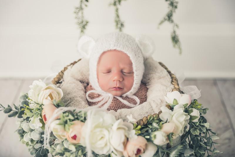 rockford_newborn_photography_O012.jpg
