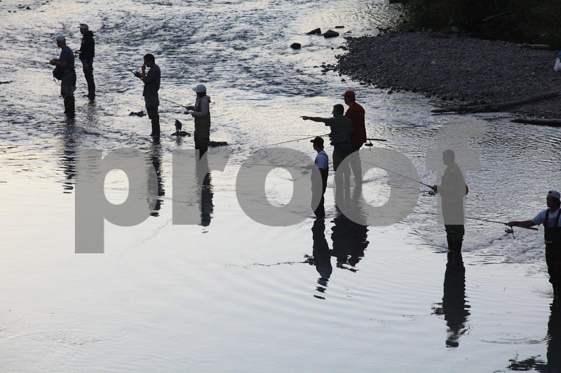 Salmon fishing on the Nisqually River, Washington State
