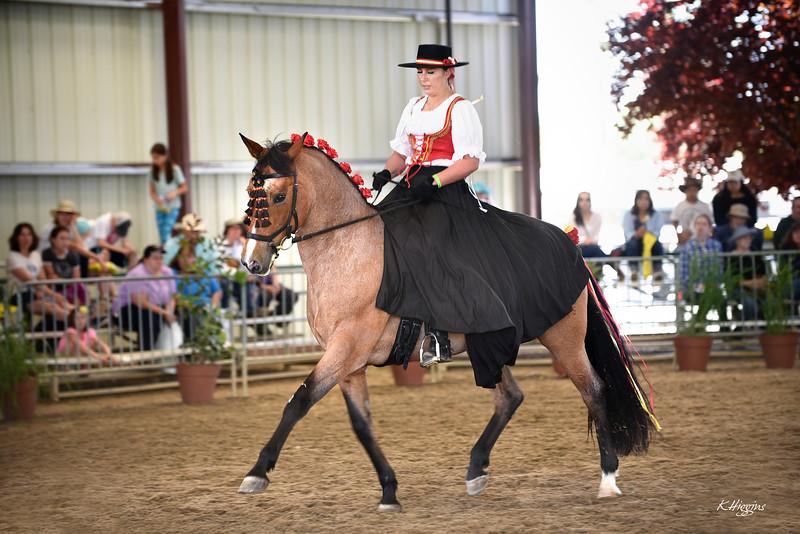 HorseDemo_B.jpg