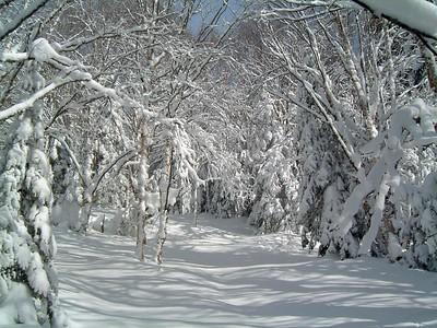 2006-02-08  Camp Mercier (Michel Valin)